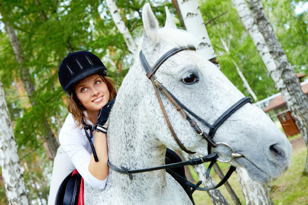 ridden horse