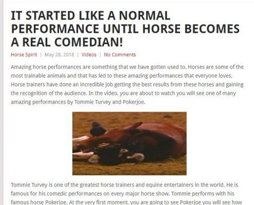 horse brisbane, horse sydney, horse melbourne,