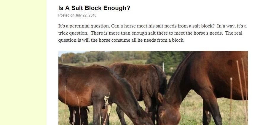 horse information, horse transport brisbane to sydney, horse transport brisbane to melboune