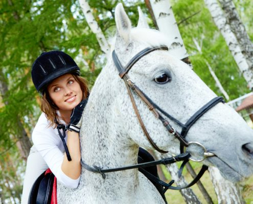 ridden horse, horse transport Sydney, Horse transport St.kilda