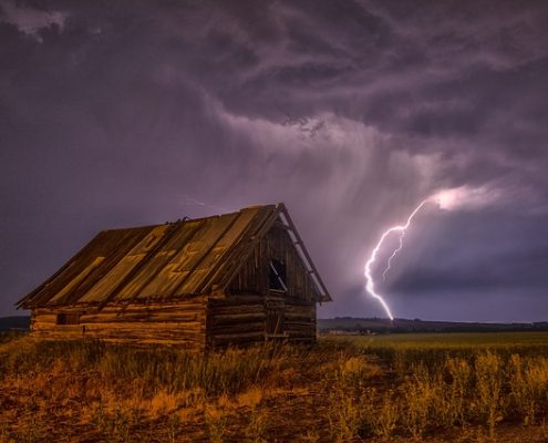 shelter paddock storm