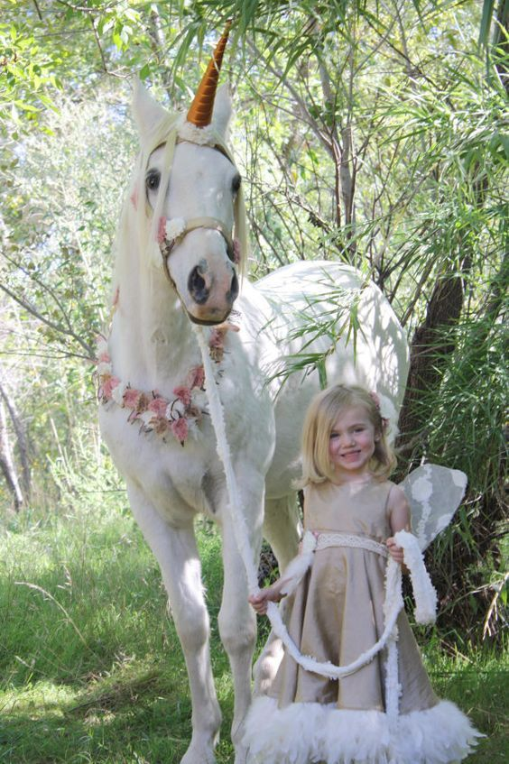 halloween for horses